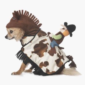 Hi ho doggie away