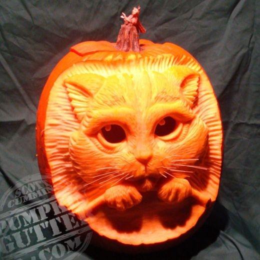Charmant Cat Halloween Pumpkin
