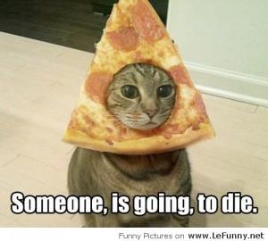 Cat Got Pizza Hat For Halloween