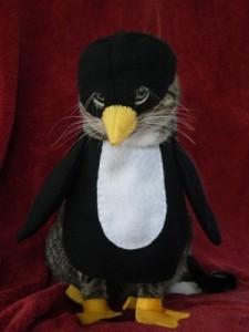 Cat Wears Penguin Costume For Halloween