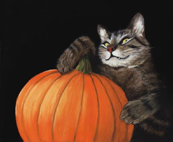 Halloween Cat Scares!!