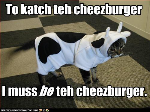 Cat Dressed Up as Cow. Tricked!!!