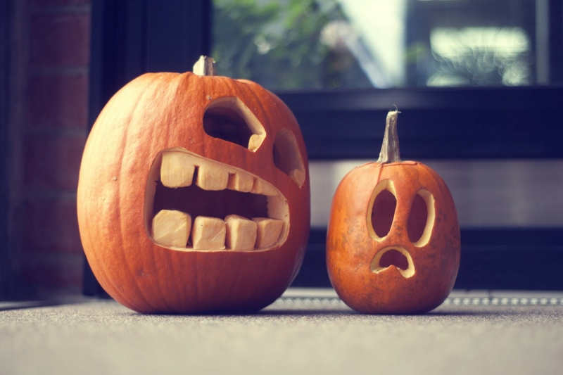 Delicieux Funny Halloween Pictures