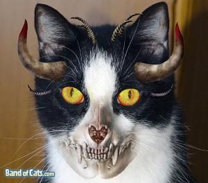 Halloween_Devil-Cat