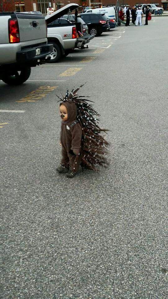 Baby Porcupine Halloween Costume